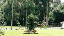 Kunjungan Raja Salman, Patung Telanjang di Istana Bogor Ditutup Pohon
