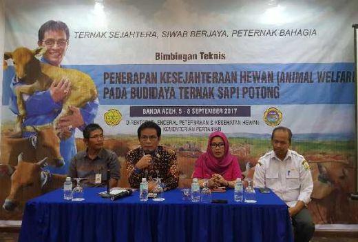 Tingkatkan Produksi Sapi Indukan di Aceh, Kementan Minta Peternak Terapkan Prinsip Kesrawan Budidaya Ternak Sapi Potong