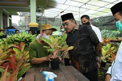 Bisa Hasilkan Rp40 Miliar, Wakil Ketua MPR: Indonesia Bisa Menjadi Pengekspor Aglaonema