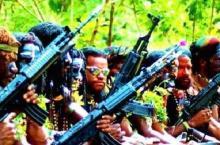 Separatis Papua Siapkan Aksi Mogok Sipil Nasional, Kekuatan Polisi Tak Jangkau Dusun-Dusun