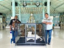 Bamsoet: Persiapan Venue PON Papua Sudah 80 Persen