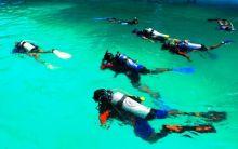 Dive Site World War II Wrecks, Wisata Selam Paling Populer di Morotai
