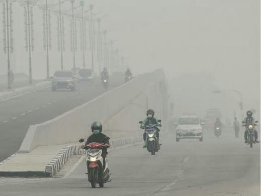 Wabah Corona Belum Usai, 3 Provinsi Termasuk Riau Bersiap Hadapi Bencana Asap