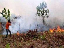 Riau Berasap, Rights Asia Desak Pemda Riau Penuhi Hak Masyarakat