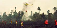 Akibat Kebakaran Hutan 2019, Indonesia Alami Kerugian Lebih dari Rp72 Triliun
