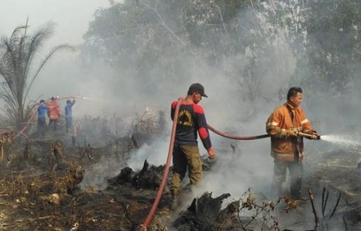 Cegah Karhutla, TMC Basahi Lahan Gambut di Riau dan Sumsel