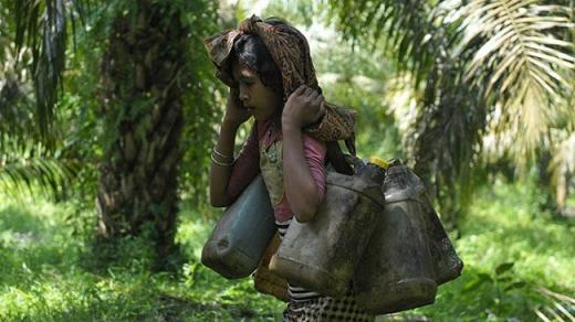 Kesulitan Cari Makan, Orang Rimba Jambi Jadi Korban Penyerangan di Tengah Covid-19