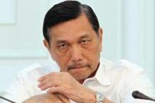 Luhut Wacanakan Impor Dokter, IDI: Bukan Kewenangan Menteri Maritim