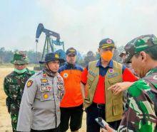 Kepala BNPB: 99 Persen Tidak Ada Kebun Sawit yang Terbakar, Tapi 80 Persen Hutan Terbakar Jadi Kebun