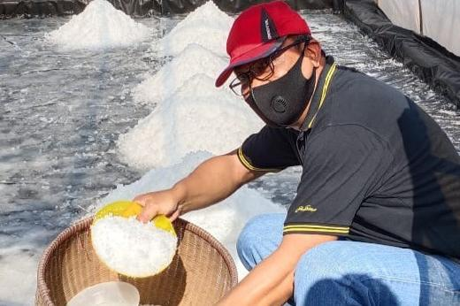 Pemerintah Masih akan Impor Garam, PKS Ingatkan Nasib Petambak Lokal