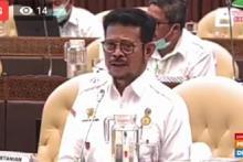 DPR Diminta Dukung Peningkatan Pajak Masuk Komoditas Pangan Impor