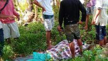 Update Gempa 6.8 SR di Ambon, 20 Orang Meninggal Dunia