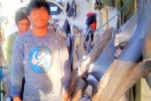 Perlindungan ABK Perikanan Lemah, KLC Desak Pemerintah Lakukan Ini...