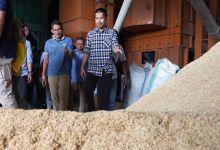Di Sidrap Sulsel, Sandiaga Uno Bertemu Herman Pengusaha Muda Pemasok Beras ke DKI
