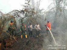 Awal Musim Kemarau, BNPB Siaga Antisipasi Karhutla Khususnya di Riau