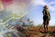 Impor Cangkul dari Cina, Rezim Jokowi Dinilai Sudah Mempermalukan dan Menghina Bangsa Indonesia